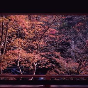 京都神社巡り|紅葉の貴船神社・御火焚祭