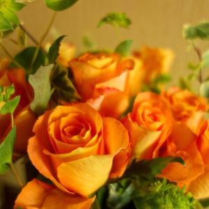 花が話しかけてきた(写真講座開催) vol.2035