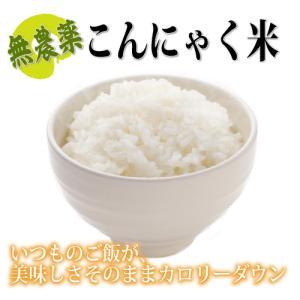 ご飯の食べ過ぎに糖質カット!セラミドも含まれる【こんにゃく米】がおすすめ!