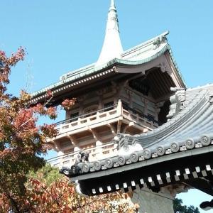てくてく11月 京都