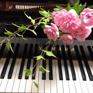 ピアノ写真シリーズ✨ピアノと花8