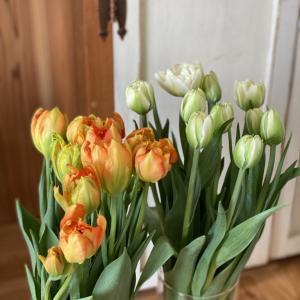 春の花いっぱいに