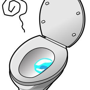 トイレの詰まりはどうしたら直るのか?