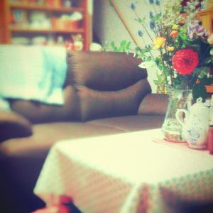 クリスマスイメージのお花とソファー