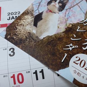 ダイソーでカレンダーを。