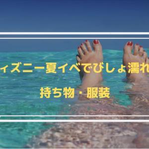 【2019ディズニー夏イベ】びしょ濡れ予定の方に必須な持ち物・服装