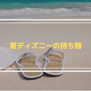 【真夏のディズニー】最低限の持ち物と注意点!【元キャスト解説】