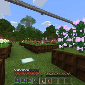 #240 お花畑を作りました~の1(*´ω`*)