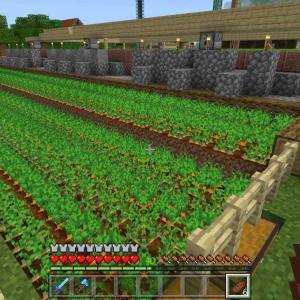 ♯80 拠点の畑と牛小屋を改築しました(*´ω`*)