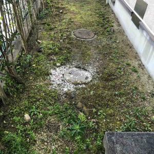 京都市北区 トイレ流れが悪い 屋外 下水詰まり 高圧洗浄 お任せ下さい‼️