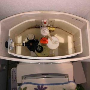 京都市山科区 トイレ水貯まらない お任せ下さい‼️