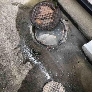 宇治市 屋外排水マス 溢れてる お任せ下さい‼️
