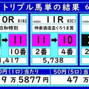 川崎トリプル馬単の結果(6/14)