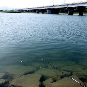 伊勢宮川で手長エビを釣ったら、特大だった!!【水中映像】
