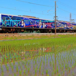 碧い電車が田園を横切ってゆく