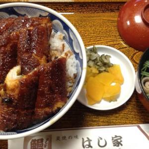鰻丼とサンマ9号、内田百間(ちくま文庫)の話など