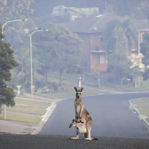 不動産投資_オーストラリア