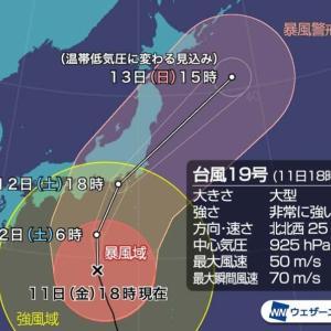台風19号の被害額165万円!