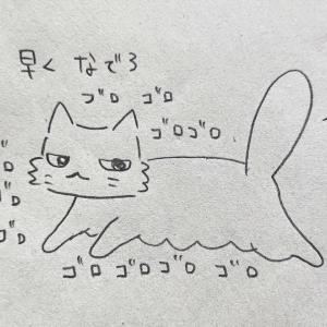 猫との寝床争奪戦