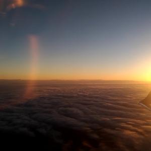 【航空会社別】妊婦はいつまで飛行機に乗れるのか?X線検査の影響は?