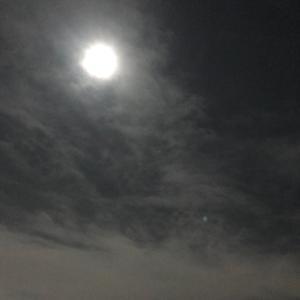満月の日に…