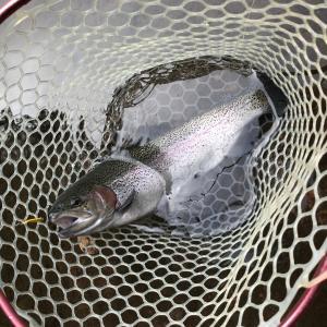 ゼロから始める管釣りシリーズその① 釣りに興味がある人はまず管釣りから始めてみよう!管釣りが初心者に超オススメなワケ。