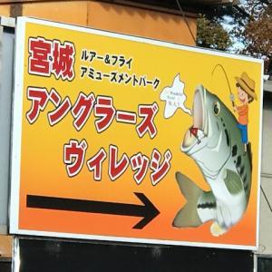 宮城アングラーズヴィレッジってなんだ!?バス・トラウト・ストライパー・キャットフィッシュ釣りが同時に楽しめる奇跡の管理釣り場を大紹介!!