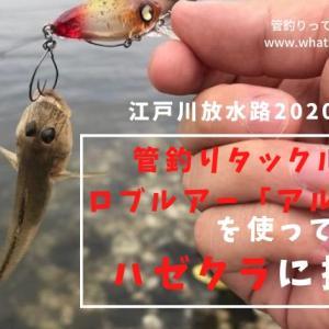 アルトボアってなんだ!?江戸川放水路のハゼクラはコレで攻めろ!!