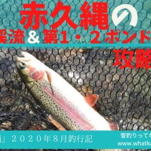 赤久縄の渓流&ポンドをルアーで攻略するブログin2020年8月釣行