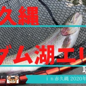 赤久縄の「ダム湖」で巨大ハコスチをゲットせよ…!?in2020年8月釣行