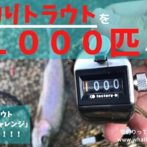 管釣り1000匹チャレンジついに達成!&蛇尾川フィッシングパークでイトウをゲット!?