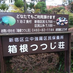 箱根 日帰り強羅温泉「つつじ荘」濁り湯、復活してました!