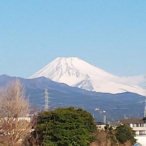 今朝の富士山&お弁当?!