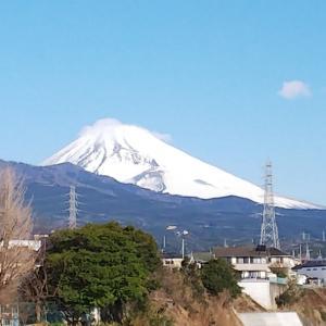 今朝の富士山&ぼっち飯のあんこう鍋、温まるね!
