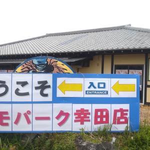 幸田町にコスモパーク幸田店が開店!