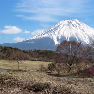 富士山の実力!朝霧ジャンボリーオートキャンプ場【前編】