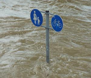 裏の川が氾濫しそうなのだが・・・