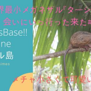"koichi""sBaseフィリピンボホール島世界最小メガネザル【ターシャ】に会いに行った"