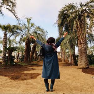 ステップ⑤~庭木(ヤシの木)を見に行く~マイホームが欲しいと思ってから