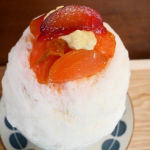 新高円寺✳︎カキ氷&カフェ フウリン堂