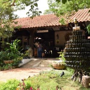 パンダバスのツアーを利用して、タイのワイナリー 2 軒を巡りました。
