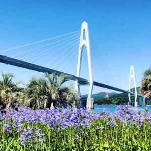 長崎県の橋巡り?