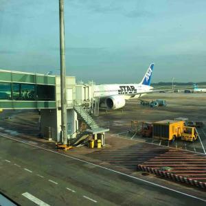 【最新情報】日本へ帰国しました(前編)【新型コロナ】