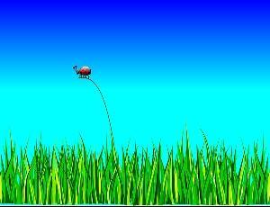 【虫嫌いにおすすめの観葉植物】虫がつかない種類や注意点を紹介
