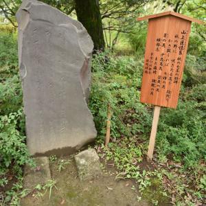 2020.8.2一日一季語  撫子(なでしこ) 【秋―植物―初秋】