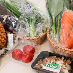 【らでぃっしゅぼーや】最近の「ぱれっと 野菜10種果物付き」で特に嬉しかったもの