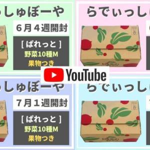【開封動画追加】らでぃっしゅぼーや「ぱれっと」4週分のお届け内容をYouTubeに公開