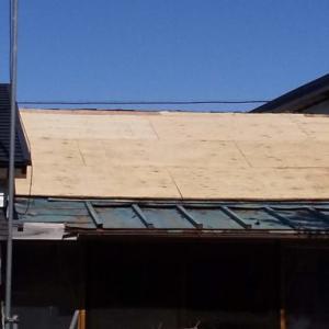 南側屋根合板貼り