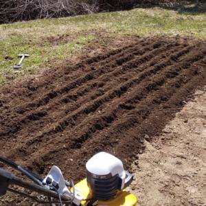 ジャガイモ植え付け&不用品廃棄