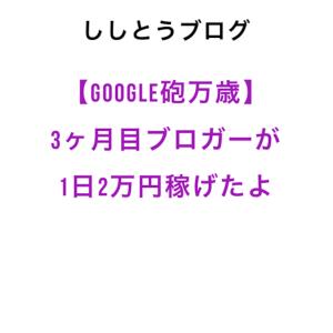 【Google砲万歳】3カ月目ブロガーが1日2万円稼げたよ。
